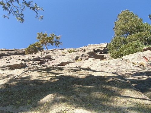 Looking_up_rock